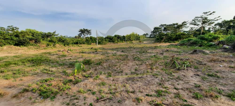 Lotissement à yamoussoukro terrain en vente immobilier abidjan