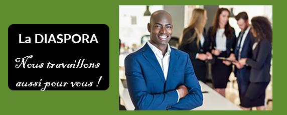La Diaspora en immobilier